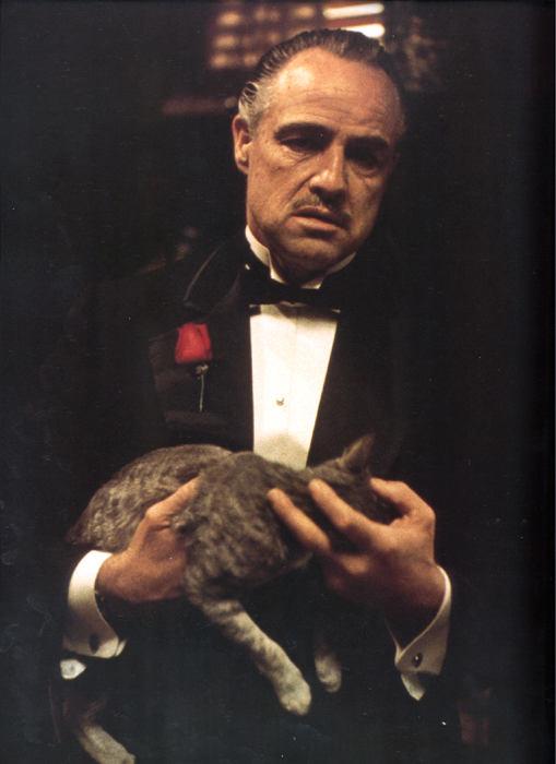 Godfather15